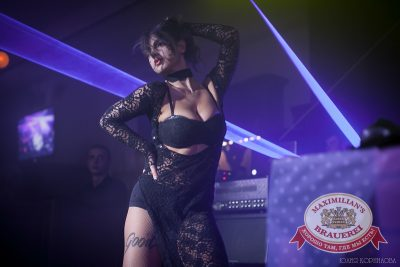 Halloween: второй день шабаша. Акт второй. «Дыхание ночи»: DJ Kley, 1 ноября 2014 - Ресторан «Максимилианс» Челябинск - 11