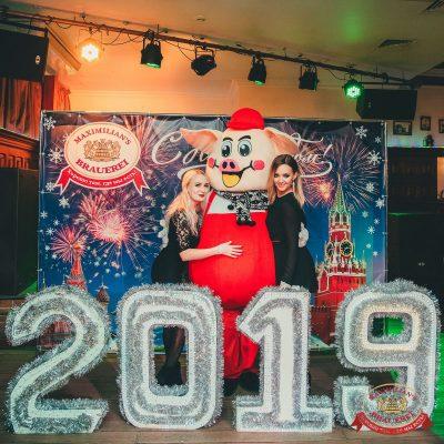 Новогодняя история, 31 декабря 2018 -  - 15
