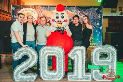 Новогодняя история, 31 декабря 2018 -  - 2