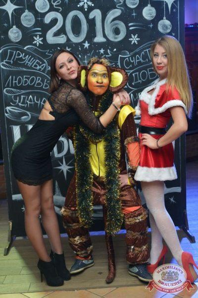 Новогодний корпоративный вечер в «Максимилианс», 24 декабря 2015 -  - 06