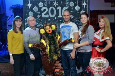 Новогодний корпоративный вечер в «Максимилианс», 25 декабря 2015 -  - 04