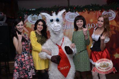 Корпоративный новогодний вечер, 25 декабря 2014 -  - 02