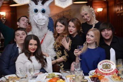 Королевская новогодняя ночь в Замке развлечений «Максимилианс», 31 декабря 2014 -  - 26
