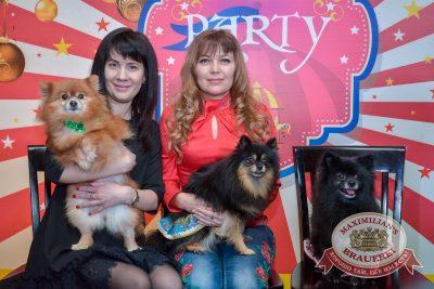 Новый год 2018: Happy circus, 31 декабря 2017 -  - 2