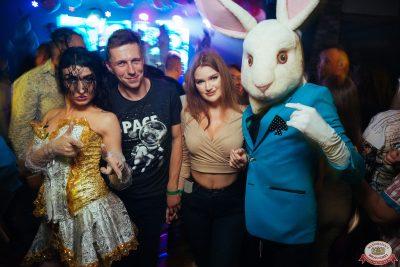 «Дыхание ночи»: Funny Bunny House, 6 июля 2019 - Ресторан «Максимилианс» Екатеринбург - 0047