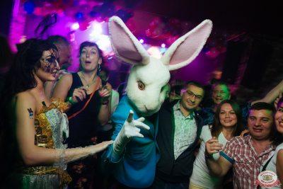 «Дыхание ночи»: Funny Bunny House, 6 июля 2019 - Ресторан «Максимилианс» Екатеринбург - 0048