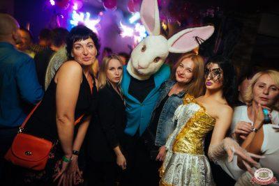 «Дыхание ночи»: Funny Bunny House, 6 июля 2019 - Ресторан «Максимилианс» Екатеринбург - 0049