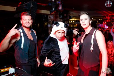 «Дыхание ночи»: «Teddy bear party», 2 марта 2019 - Ресторан «Максимилианс» Казань - 24