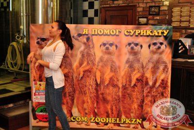 Рок-концерт в поддержку Казанского зоопарка, 18 августа 2014 - Ресторан «Максимилианс» Казань - 10