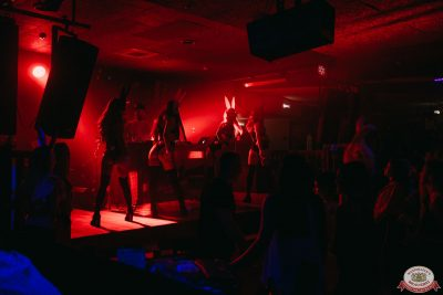 «Дыхание ночи»: Funny Bunny House, 6 июля 2019 - Ресторан «Максимилианс» Красноярск - 0021