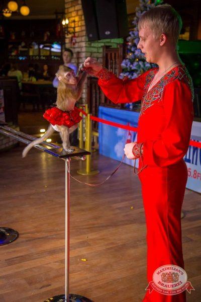 День именинника, 12 декабря 2015 - Ресторан «Максимилианс» Красноярск - 18