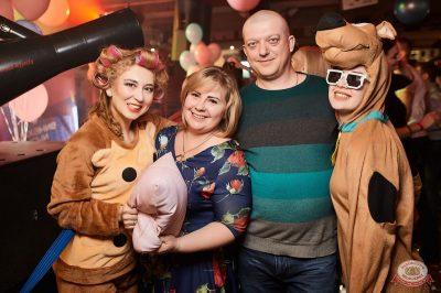 «Дыхание ночи»: «Teddy bear party», 2 марта 2019 - Ресторан «Максимилианс» Новосибирск - 26