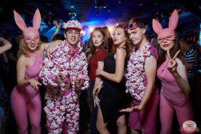 «Дыхание ночи»: Funny Bunny House, 6 июля 2019 - Ресторан «Максимилианс» Новосибирск - 052