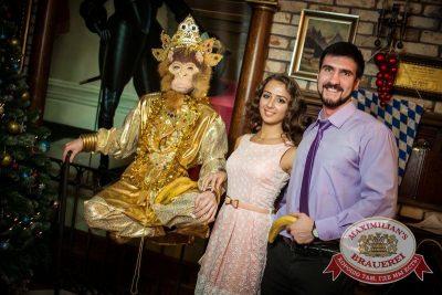Карнавальная ночь в «Максимилианс», 1 января 2016 - Ресторан «Максимилианс» Новосибирск - 09
