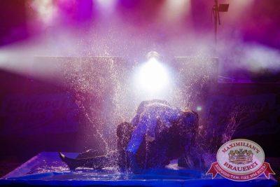 Давайте потанцуем. Тур третий, 7 октября 2015 - Ресторан «Максимилианс» Новосибирск - 15