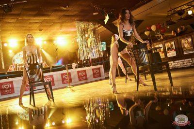 Вечеринка «Холостяки и холостячки», 9 ноября 2019 - Ресторан «Максимилианс» Новосибирск - 23
